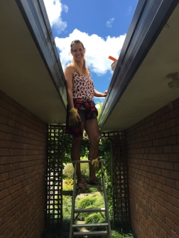 Cleaning gutters!